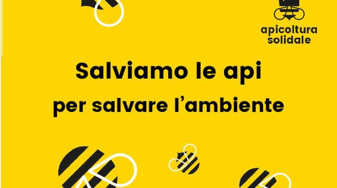 20200215-salviamo-le-api